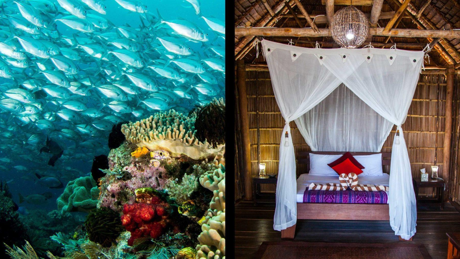 Unterwasserwelt & Unterkunft - Sonderangebote Raja Ampat