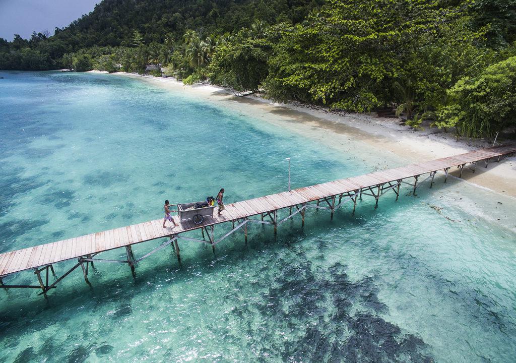 Raja Ampat Dive Sites - Biodiversity house reef