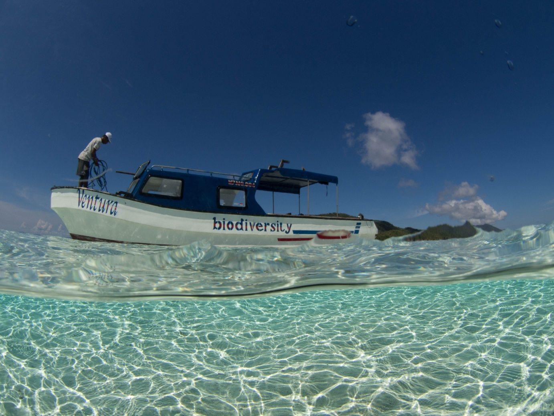 buceo en indonesia barco