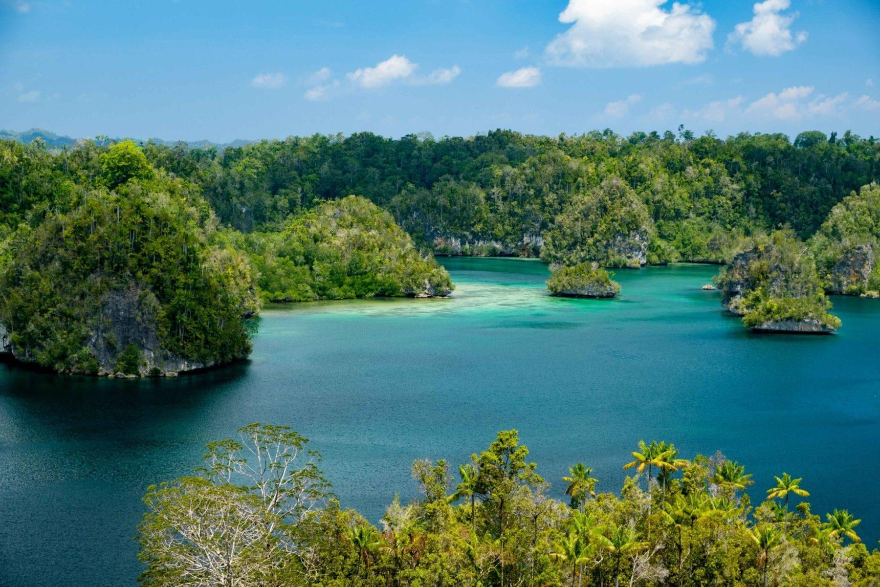 islas de raja ampat imagen