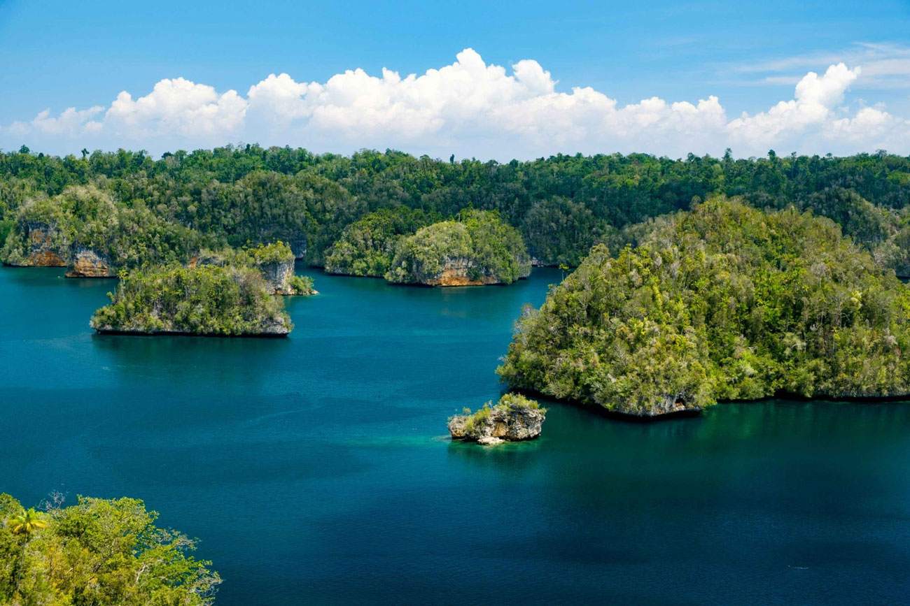 Raja Ampat Biodiversity Eco Resort - Islands of Raja Ampat