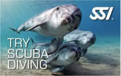 Discover Scuba Diving - Try Scuba Diving SSI