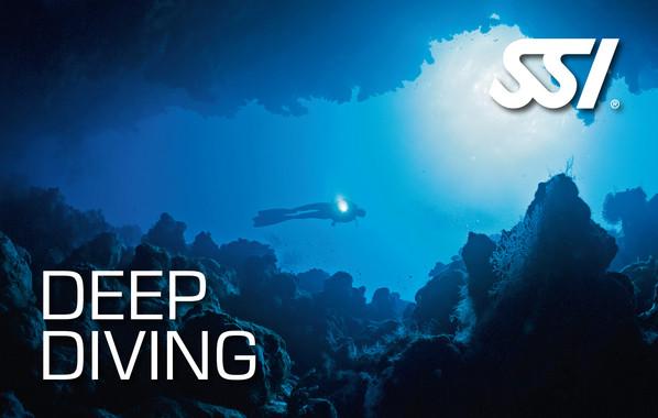 SSI Deep Diving - 8 Typs of diving biodiversity Eco Resort
