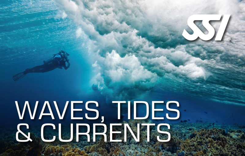 SSI Drift Diving - 8 Typs of diving biodiversity Eco Resort