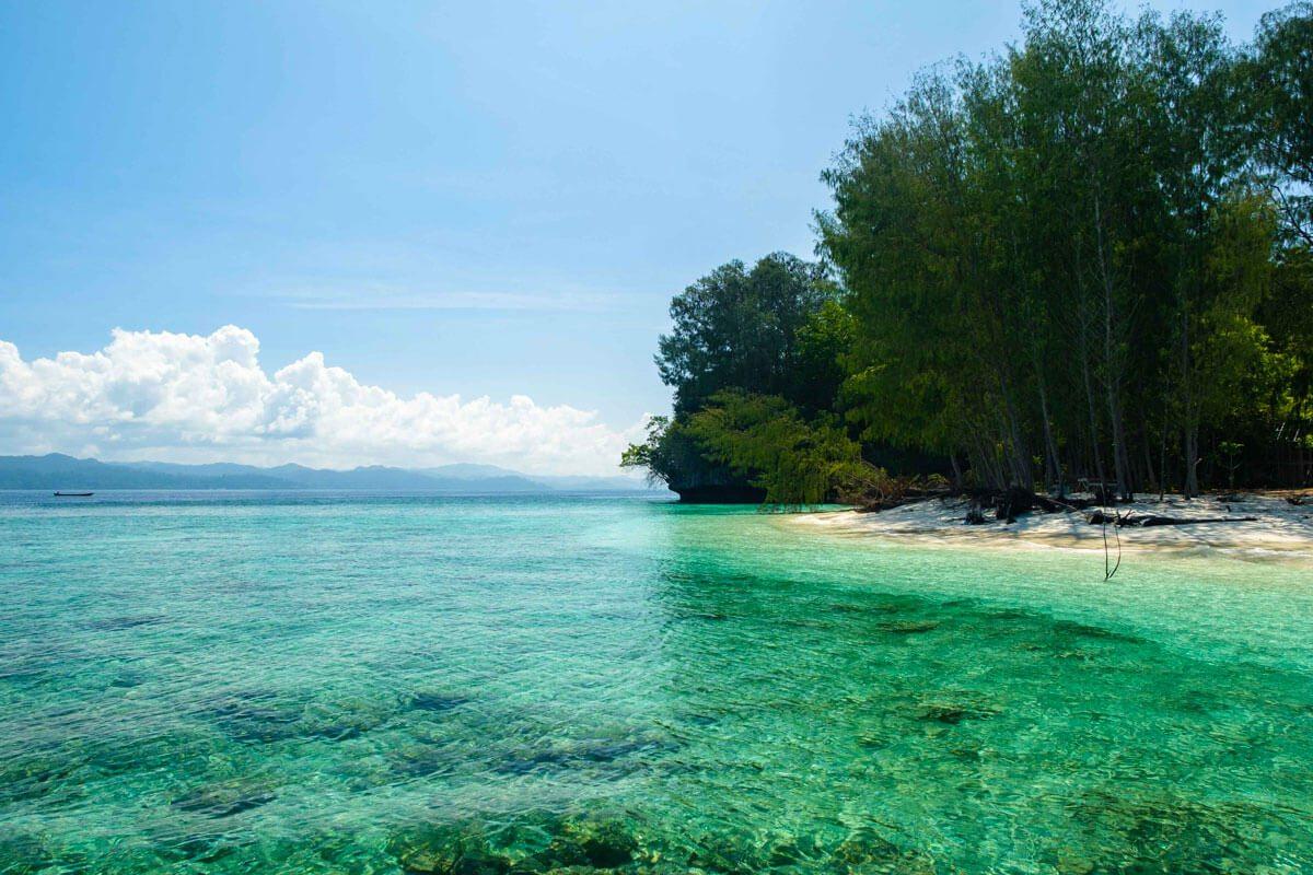 raja ampat activities - Island hopping snorkeling or diving