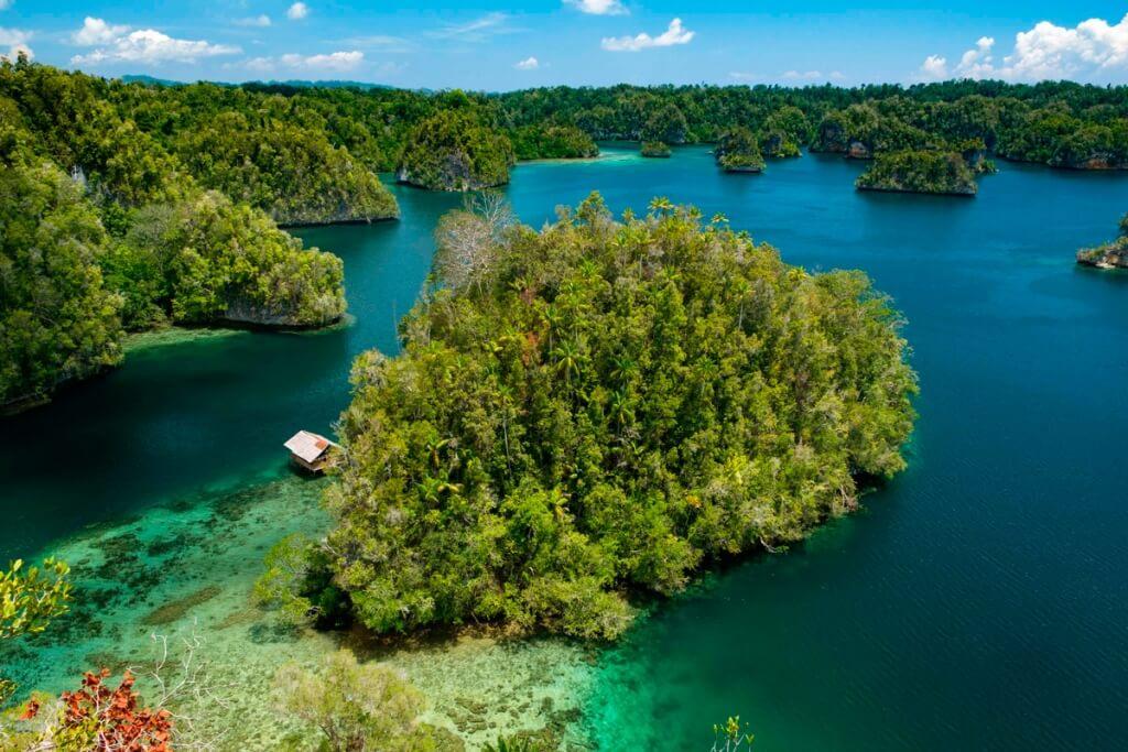 raja ampat indonesia Biodiversity nature