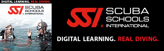 ssi-digital-learning-2