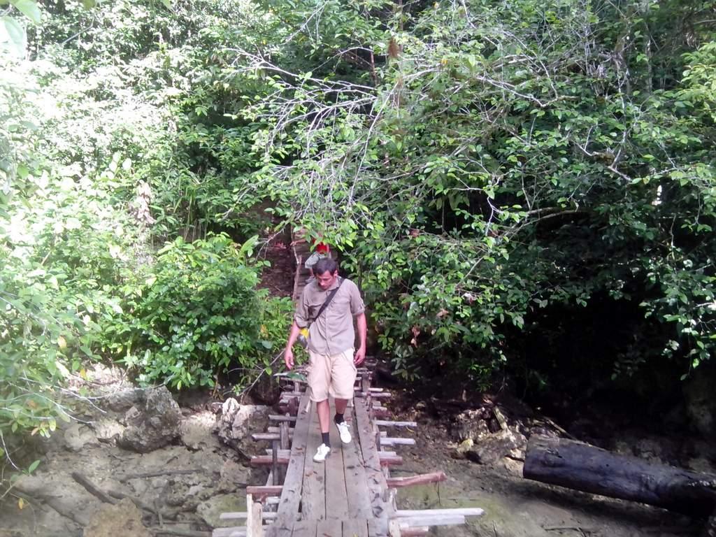 birdwatching and jungle treks in raja ampat
