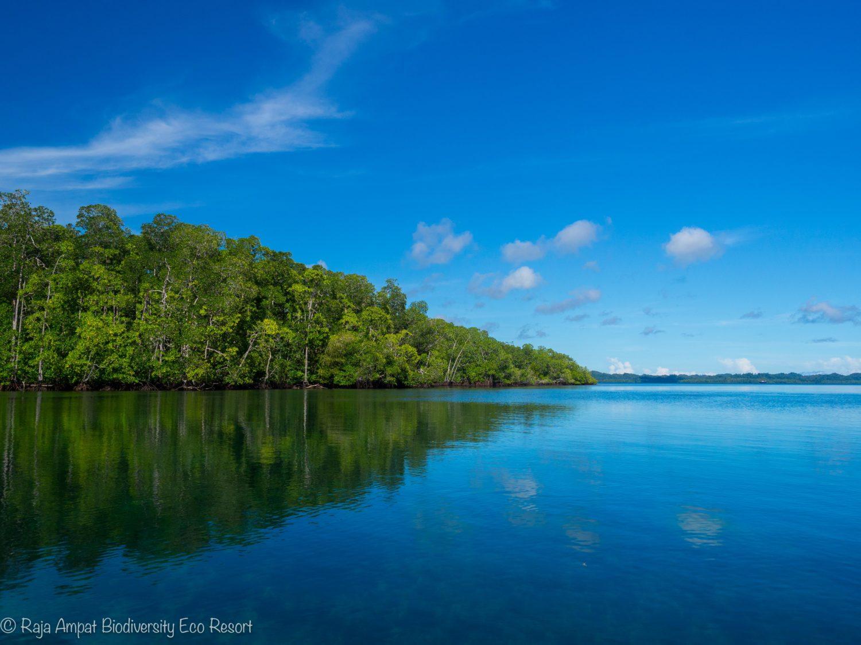 Raja Ampat Excursions - Around Gam Island