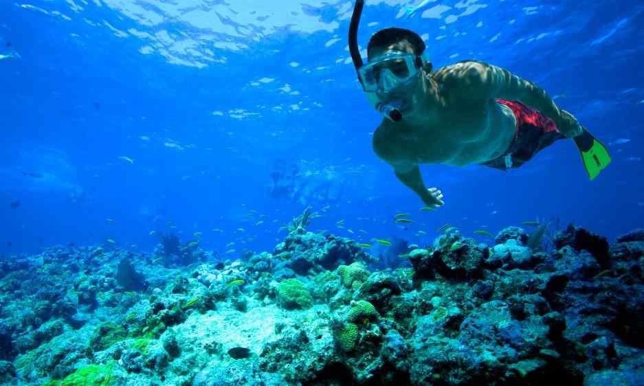 Snorkelling