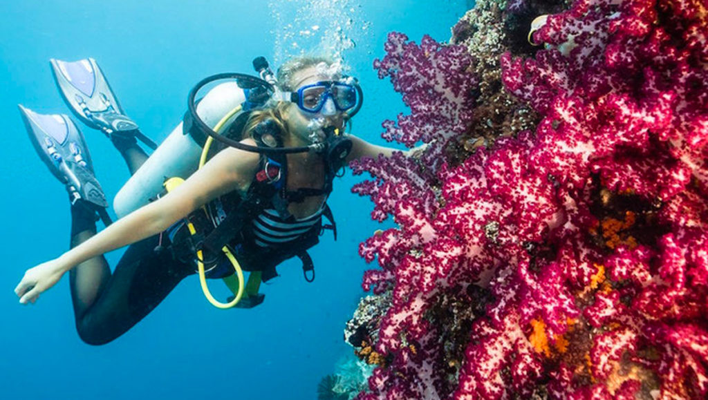 Special Offers Raja Ampat - Single travelling